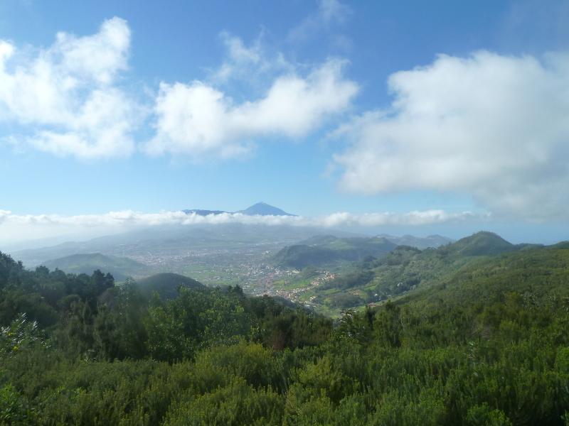 Espectaculares vistas desde Cruz del Carmen